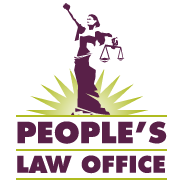 Civil Rights Lawyers in Chicago